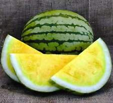 Seeds Watermelon Yellow Rare Fruits Planting Organic Heirloom Garden Ukraine