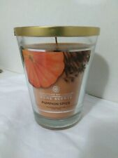 NEW Chesapeake Bay Candle Home Scents Pumpkin Spice Scented Candle 11.5 OZ Jar