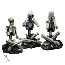 Nemesis Now  SEE NO, HEAR NO.....SKELETONS  Brand New (Set of 3) Gothic Vamp