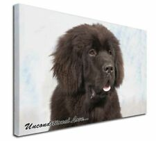 More details for newfoundland dog-with love x-large 30