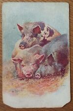 Greetings Pig Postcard , Early Postcard Posted 1914 Signed O. Anders