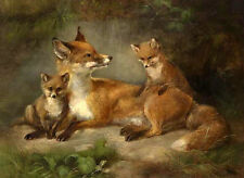 ZWPT270 charm 100% hand-painted art modern wild foxes decor oil painting canvas