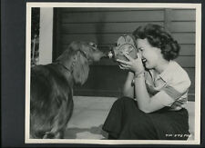 GALE STORM FILMS HER IRISH SETTER DOG -1950 CANDID FOR CY ENDFIELD 'S UNDERWORLD