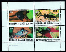 GB Locals - Bernera 3764 - 1982 TROPICAL FISH perf sheetlet of 4  unmounted mint