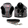 Soft Cotton Padded Step-in Dog Harness & Leash Set Puppy Walking Harness Vest