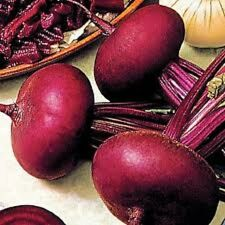 250 PIATTA D'EGITTO BEET Italian Heirloom Beta Vulgaris Cicla Vegetable Seeds