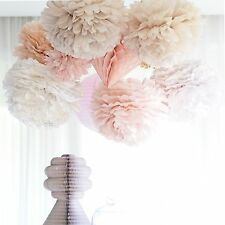 Party decoration  set - 20 tissue paper pompoms and 1 tulle pom pom - party pom