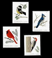 US 5317-5320 Birds in Winter forever set (4 stamps) MNH 2018