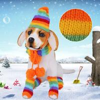 manteaux l'écharpe de pet chapeau chaud cat. chien chaussettes petit costume