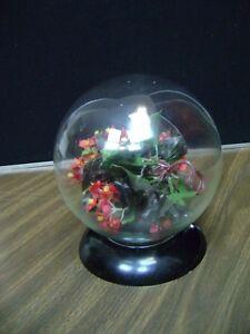 Glass Rose Globe Terrarium Flower Frog Vintage Round Crystal Ball Plant