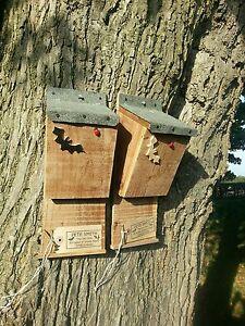 BAT BOX  NESTING ROOSTING QUALITY HANDMADE BOX x2 WITH THICK FELT ROOF  ^●^