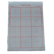 Magical Chinese Reusable Calligraphy Practice Cloth Papers 10pcs