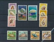 LL88242 World seashells conks sealife fine lot MNH