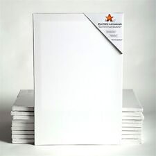 """10 ART-STAR STRETCHED CANVASES   ~20""""x24"""", 100% cotton   stretcher bars, primed"""
