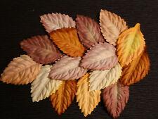 50 paper Autumn LEAVES 40mm MPL33B Autumn Craft Scrapbook Card embellishment