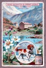 Great St Bernard Pass Swiss Alps Gran San Bernardo c1903 Trade Ad Card