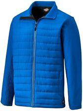 Dickies Loudon Work Jacket - Mens Royal Blue Padded Coat EH36000