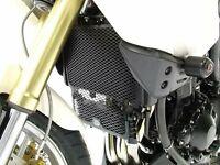 Triumph Tiger 1050 2007-2019 R&G Titanium Radiator & Oil Cooler Guard RAD0073TI