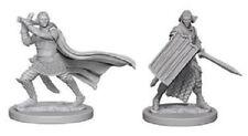 D&D Paizo Deep Cuts Miniatures Elf Male Paladin (2)