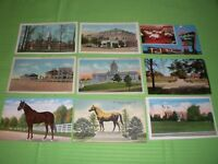 Lot of 9 Vintage Linen and Regular State of Kentucky Postcards