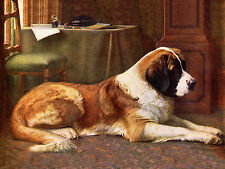 SAINT BERNARD LOVELY VINTAGE IMAGE OF A DOG ON DOG GREETINGS NOTE CARD