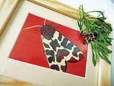 "IDEAL GIFT: garden tiger moth FRAMED PRINT 9.45"" x 7.4"" terracotta brown cream"