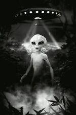 toile tableaux  extraterrestre  aliens  50x70 cm