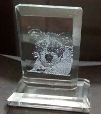 PERSONALIZED MINI LASER PHOTO CRYSTAL GIFT GRANDMA -DAD FRIENDS KIDS PETS XMAS 2