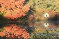 Photo Art Canvas Print-Langwater Reflections