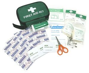 First Aid Kit, 45 Piece Emergency Medical Kit Bag, Travel Holiday Workplace Car