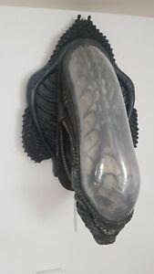 Alien Life-Size Head 1:1 Replica Xenomorph Bust Büste von Neca - wie Sideshow