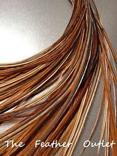 Lot 10 Grizzly Feathers Hair Extensions saddle Natural Furnace Brown