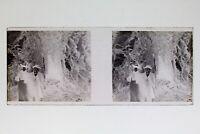 Francia Grotte Foto Negativo PL51L24n13 Placca Da Lente Vintage 1907