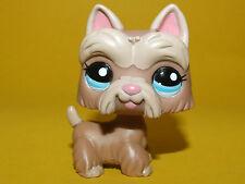 P1) Littlest Pet Shop LPS - Dog Hund Scottie Scottish Terrier #2081