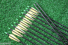 12PCS 31'' Screw on/off Tips Fiberglass Arrows For Recurve Bow Shooting Practice