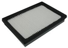 Air Filter Pentius PAB9555