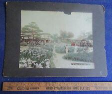Original 1890's Oversized Tinted Photograph - Garden of Sweat Flag, Tokyo