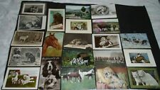 ANIMALS - 20 VINTAGE POSTCARDS - 9 POSTED 1903  - 1935 -