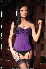 Sexy Lingerie Coquette Purple Boned Lace over Satin Padded Corset Bustier