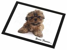 Shih Tzu Dog 'Yours Forever' Black Rim Glass Placemat Animal Table Gif, AD-SZ6GP