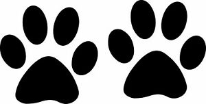 PAW PRINT IN MANY COLOURS iron-on HOTFIX transfer applique patch