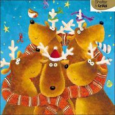 Pack de 5 RENNES abri & crise charité Cartes de Noël Packs de cartes de Noël