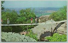 Chattanooga Tennessee~Swing Along Bridge & Valley~Standard Chrome Postcard