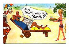 Isn't Florida Wonderful Postcard Millions of Tourists Agree Drawing Beach Bikini