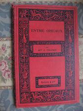 1914 Entre Oiseau J Colomb Bibliothèque des écoles et des familles livre enfant