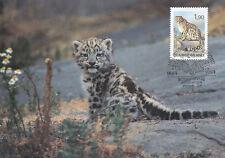 Finland 1989 - Maxi Card nr 10 - WWF - Snow Leopard Cub - Helsinki Zoo