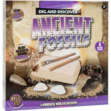 KIDS DIG & DISCOVER ANCIENT FOSSILS CHILDRENS EDUCATIONAL ARCHAEOLOGY SET 166624