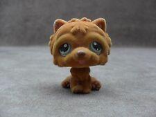 Littlest Pet Shop #332 FUZZY Brown/Gold Chow Chow Puppy Dog 2007