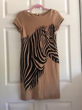 Taylor Women Light Brown Zebra Print Knit Dress Small