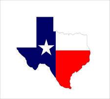 Texas State Flag Decal TX Texan USA Vinyl Hard Hat Helmet Car Sticker Waterproof